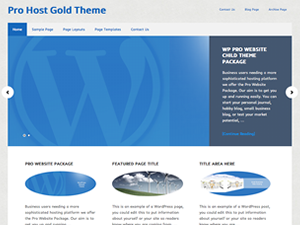 Pro Website Theme